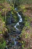 Chorrito del agua sobre musgo y de las rocas en las cascadas de Melincourt fotografía de archivo