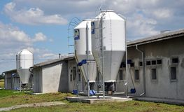 Farm for growing pigs. Chortkiv - Ternopil - Ukraine - July 4, 2016. The farm for pig breeding is equipped with a hopper for feeding fodder in the village of Stock Photo
