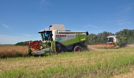 On the field combine harvest harvest royalty free stock images