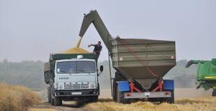 Unloading grain from bunker-reloader on truck stock images