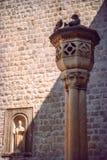 Chorwacja, Dubrovnik, ściana i gołąbki, Fotografia Stock