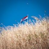 Chorwacja flaga Zdjęcia Royalty Free