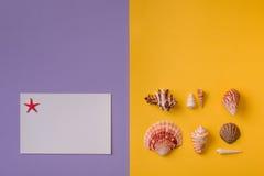 Choses de mer sur coloré Image stock