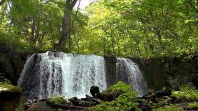 Choshi Otaki Falls in Oirase Stream