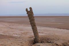 Chott el Djerid, słone jezioro, Tunezja zdjęcia royalty free