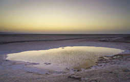 Chott el Djerid - salt lake in Tunisia. Chott el Djerid - a dried out salt lake from Tunisia - at sunrise Stock Photos