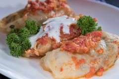 Chou bourré de la viande hachée avec du riz, avec la sauce de sauce à ail et tomate photo libre de droits