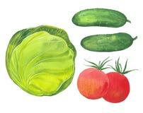 Chou, concombre et tomates Photographie stock libre de droits
