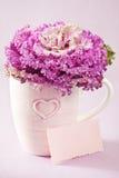 Chou décoratif Image stock