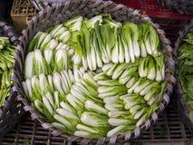 Chou de Bok Choy dans un panier Photo stock