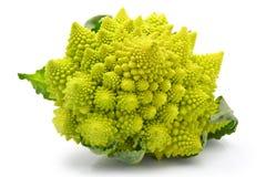 Chou de broccoli de Romanesco d'isolement Photo stock