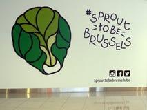 Chou de Bruxelles de Hashtag Photos stock