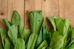 Chou de chine vert frais, Bok Choy, Pok Choi ou PA Photo libre de droits
