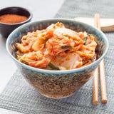 Chou de Kimchi Apéritif coréen dans une cuvette, place image libre de droits