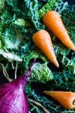 Chou de Milan déchiqueté, oignon rouge et carottes chantenay de bébé Photographie stock libre de droits