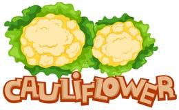 Chou-fleur Image stock