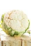 Chou-fleur d'isolement sur le fond blanc Photographie stock