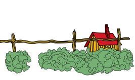 Chou près de la construction rurale illustration stock