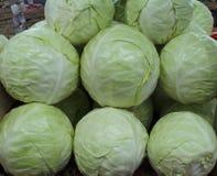 Chou vert et blanc frais sur le marché d'agriculteurs Image stock