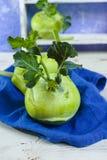 Chou vert frais de chou-rave avec les feuilles vertes Photo libre de droits