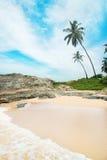 Échouez avec des vagues contre la roche et des palmiers dans le jour ensoleillé Photographie stock