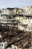 Chouwara tanneries, Fes Morocco Royalty Free Stock Images