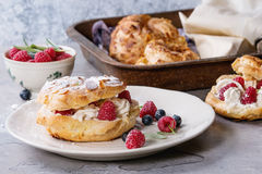 Choux cake Paris Brest with raspberries Stock Images