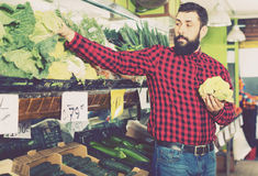 Choux-fleurs de offre de jeune vendeur masculin Image stock