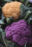 Choux-fleurs frais crus Photo stock
