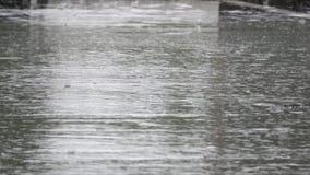 Chova as gotas que caem no asfalto durante um temporal video estoque