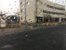 Chova gotas imagem de stock