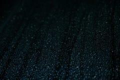 Chova gotas Foto de Stock Royalty Free