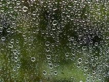 Chova gotas na janela com a árvore verde no fundo foto de stock royalty free