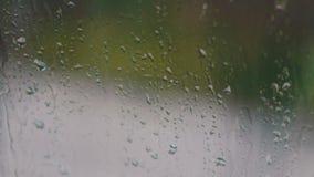 Chova gotas na tarde do vidro na primavera, no fundo que passa carros video estoque