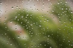Chova gotas no fundo da árvore do verde do vidro de janela Imagem de Stock