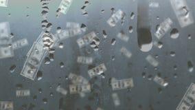 Chovendo notas de dólar video estoque
