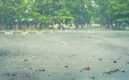 Chover do fundo do borrão Imagem de Stock
