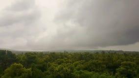 Chover sobre um mau tempo da floresta com timelapse escuro das nuvens video estoque