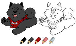 Chow chow cute cartoon dog. Vector coloring book version. Royalty Free Stock Image