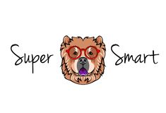 Chow chow dog geek. Dog in Smart glasses. Super smart inscription. Vector file. Chow chow dog geek. Dog in Smart glasses. Super smart inscription. Vector Royalty Free Stock Photography