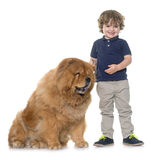 Chow chow dog and little boy Royalty Free Stock Photo