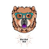 Chow chow dog wearing in smart glasses. Dog geek. Vector illustration. Chow chow dog wearing in smart glasses. Dog geek. Vector illustration isolated on white Stock Image