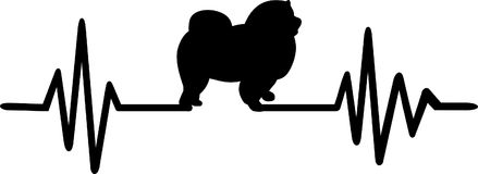 Chow-chow heartbeat. Heartbeat pulse line with Chow-chow dog silhouette Stock Image