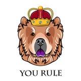 Chow Chow king. Crown. Dog Portrait. Vector. Chow Chow king. Crown. Dog Portrait. Vector illustration. You rule inscription Stock Photos