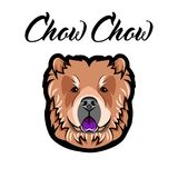 Chow Chow muzzle. Dog Portrait. Dog breed. Face, head. Vector. Chow Chow muzzle. Dog Portrait. Dog breed. Face, head Vector Illustration Stock Images
