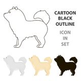 Chow-chow vector icon in cartoon style for web Royalty Free Stock Photo