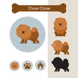 Chow Chow Dog Breed Infographic Photographie stock