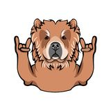 Chow Chow with horns, Rock gesture. Dog breed. Vector illustration. Chow Chow with horns, Rock gesture. Dog breed. Vector illustration isolated on white Stock Images