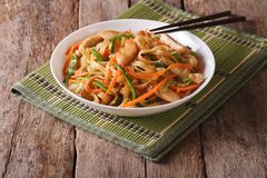 Chow mein with chicken and vegetables, horizontal Royalty Free Stock Photos