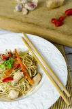 Chow mein noodles with chicken, mushrooms, carrots and onions Royalty Free Stock Photos